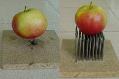 spijkers appel