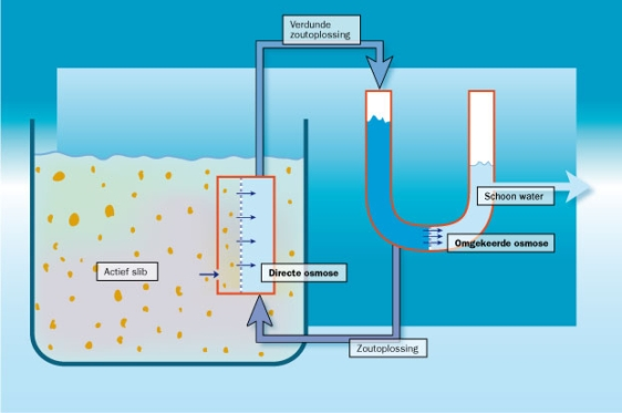 osmose oceaanschip