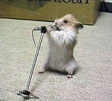 muizen kunnen zingen